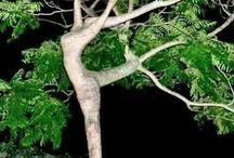 Treeformation