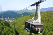Ober Gatlinburg / by Visit Gatlinburg
