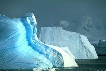 Amazing Antarctica Land Of Ice / by Andrea Williams
