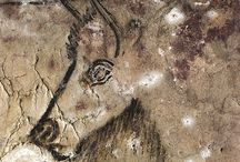 Palaeontologia ( rysunki na skalne)