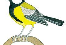 Linnnut