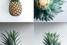 Dekorationer/Blommor