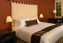 Fabulous Hotel Rooms / Deluxe accommodation in the heart of Sedona with views of the red rocks. / by AmaraResort