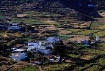 SANTIAGO DEL TEIDE / Fotos del municipio de Santiago del Teide
