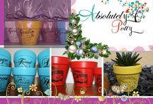 Absolutely Potty / Custom made pots