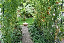 Love for gardening