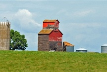 Barns / by Lana Irons