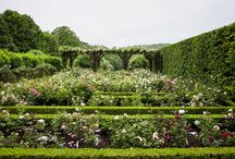 British garden