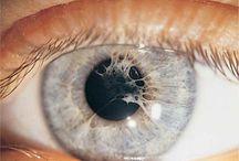 My optometry world
