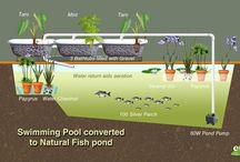 atural pools
