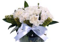 Ataşehir çiçek siparişi / Çiçek Vitrini ile ataşehir çiçek siparişi vermek çok kolay.! Ataşehir çiçek siparişi için kategorsi sayfamızı ziyaret edin http://www.cicekvitrini.com/cicekler/atasehir-cicek-siparisi