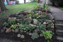 Yard Ideas / by Joy Carver