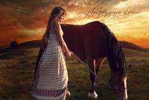 Horses / by Deanna Dotta
