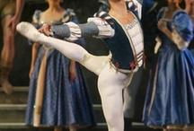 Meine Leidenschaft für das Ballett