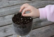 self watering garden container
