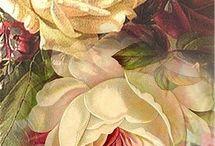 картинки - цветы