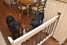калитка для собак