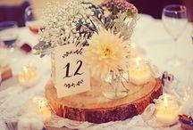 Wedding/Reception
