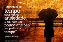 Frases Mário Pires