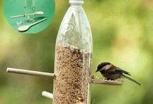 Fulglemater / Småfuglene