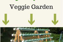 Hydroponic veg system
