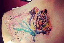 Tiger+Lion