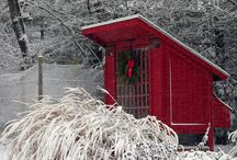 Chicken Coops / by Marty Bammann
