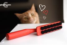 Tools for Cats
