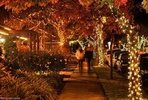 Holidays in the Valley / Must see + must do holiday activities in the Napa Valley / by Harvest Inn