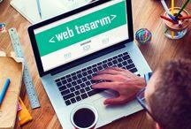 Avcılar Web Tasarım Hizmetleri