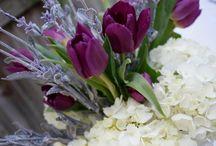 flowers / by Gabriela Flores