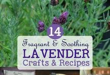 Plant crafts and recipes