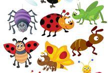 ms hmyz