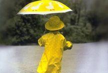 quadri gialli