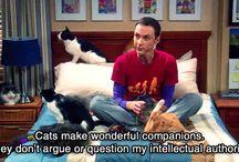 Big Bang Theory  / by Victoria Everett