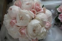 Flowers I love / by Lindsey Slivinski