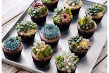 plants in cups / Botanical, teacup succulents, indoor plants