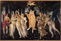 kittys / by Ouida Munck
