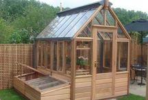 Garden Tips / Hacks Vegetable gardening