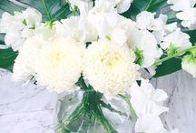 Contemporary White Flowers