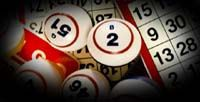 Net2bet /  Welcome to Net2Bet! Here you can play Bingo which is fun to play and easy to understand. Win big and play more at various online casinos offered at Net2Bet. Another popular game here is Poker with which you can earn more. Get to know more about these games here.
