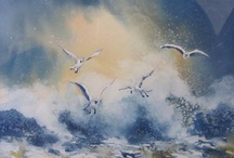 seagulls background