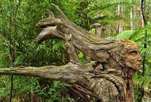 Sculpture en arbre