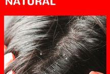 Cabelo / Cortes de Cabelo Masculino; Cortes de Cabelos Feminino; Cortes de Cabelo; Cabelos Curtos, Cabelos Longos; Cabelos Lisos; Cabelos Cacheados; Cabelos Crespo; Cabelos Tingidos; Cabelos Naturais; Cabelos com Química; Cabelos Brancos; Desmaia Cabelo; Hidratação para Cabelo; Pintar Cabelo; Alisar Cabelo; Cachear Cabelo; Ondular Cabelo; Frisar Cabelo; Como Secar o Cabelo; Penteados; Cabelos Fortes e Saudáveis; Queda de Cabelo; Alopecia; Cuidador do Couro Cabeludo; Transição Capilar; Detox Capilar.