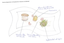 Birth of culinary delights / A masterpiece on paper of starter painted by our Souschef.