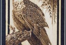 Woodburning eagles, hawks, owls, etc