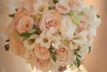 Fleurs - Bouquets
