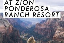 Things To Do Zion Ponderosa