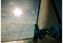 Sea&freedom