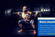 Bodybuilding Supplements / Everything about Bodybuilding Supplements